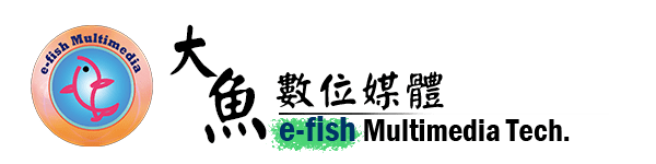 大魚數位媒體有限公司 e-fish Multimedia Technology Co., Ltd.